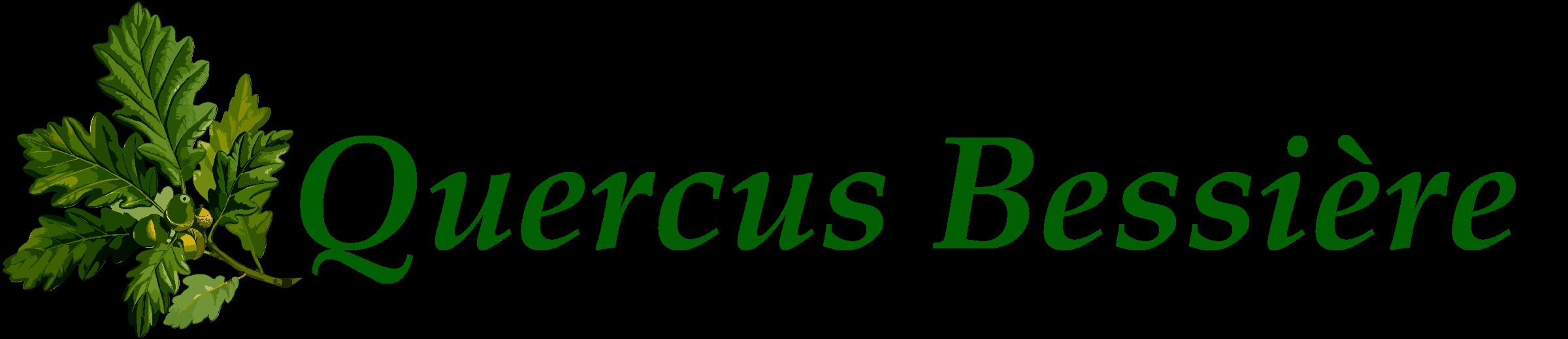 Logo Quercus Bessière